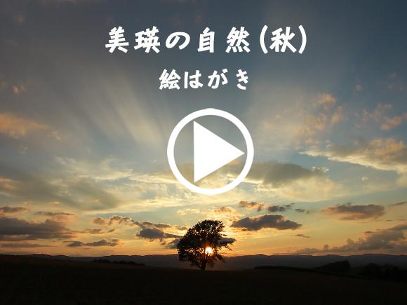 20110502ポストカード秋.jpg