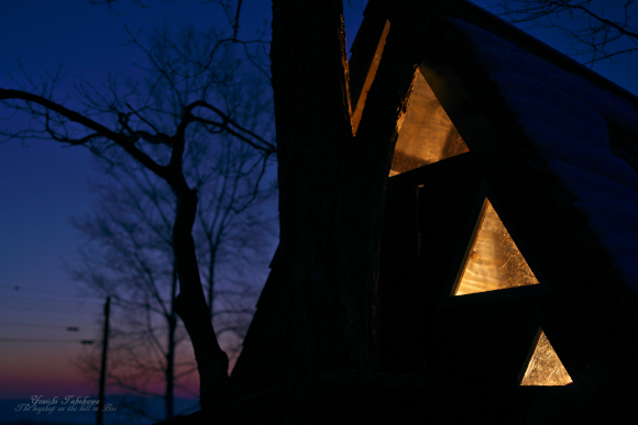 フォレストトライアングル夜景